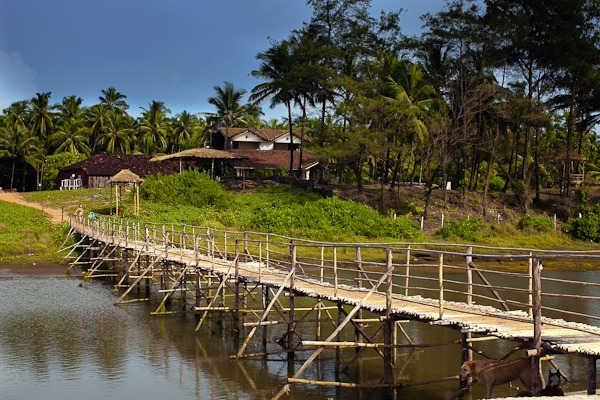 Bridge across river to beach huts Arambol Beach Goa