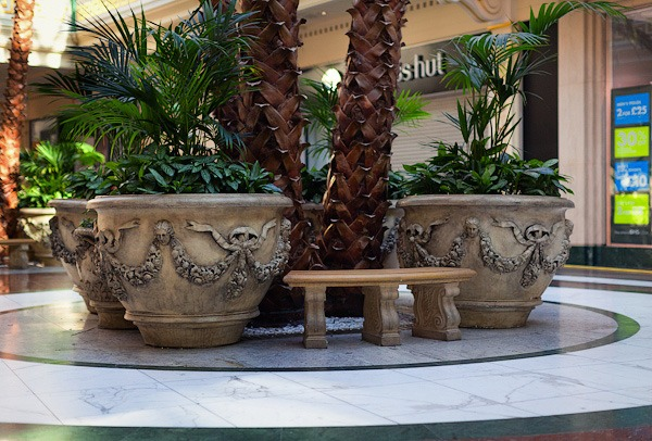 Giant plant pots in the trafford centre