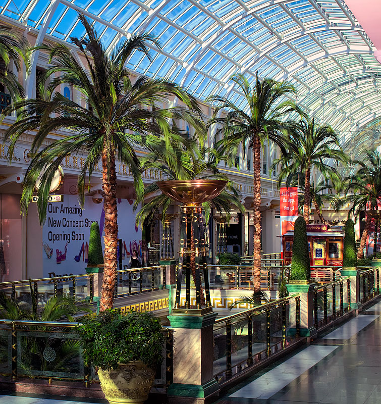 palm trees and interior plants and interior landscaping trafford centre manchester